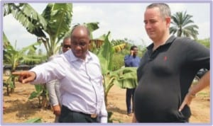 Rivers State Governor Rt. Hon. Chibuike Rotimi Amaechi (left), showing the United States of America Consul General to Nigeria, Jeffrey Hawkins the Banana Farm, a joint venture agro - project between the State government and a Mexican firm in Ueken- Tai, Rivers State, yesterday.