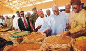 President Goodluck Jonathan (3rd right), Governor Ibrahim Shema of Katsina State (2nd right), Minister of Agriculture, Dr Akinwumi Adesina (right), during an inspection visit to the Songhai Katsina Initiative,  recently.