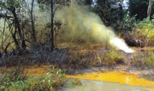 Mixture of Oil and Gas discharging into the environment at Ikarama Oil Fields operated by Nigeria Agip Oil Company in Yenagoa lga, Bayelsa, recently. Photo: NAN