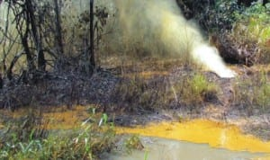 Mixture of oil and gas discharging into the environment at Ikarama oil fields operated by Nigeria Agip Oil Company in Yenagoa LGA, Bayelsa, recently.