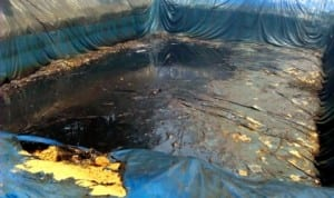 Illegal crude oil dump discovered by Naval Officers in Oteghele forest, Warri recently. Photo: NAN