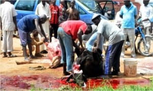 Members of National Union of Town Service Operators, slaughtering  cows for the celebration of Eid-el-Fitr in Bauchi, last Saturday