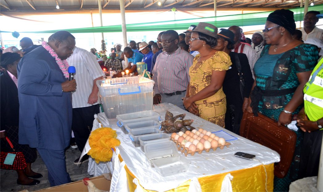 Rev. Stephen Akinola, General Overseer of  Redemption Ministies (left) inspecting  exhibition during Skills Acquisition Programme organised  by Divine Daughters of  Destiny in  Port Harcourt, recently. Photo: Nwiueh Donatus Ken