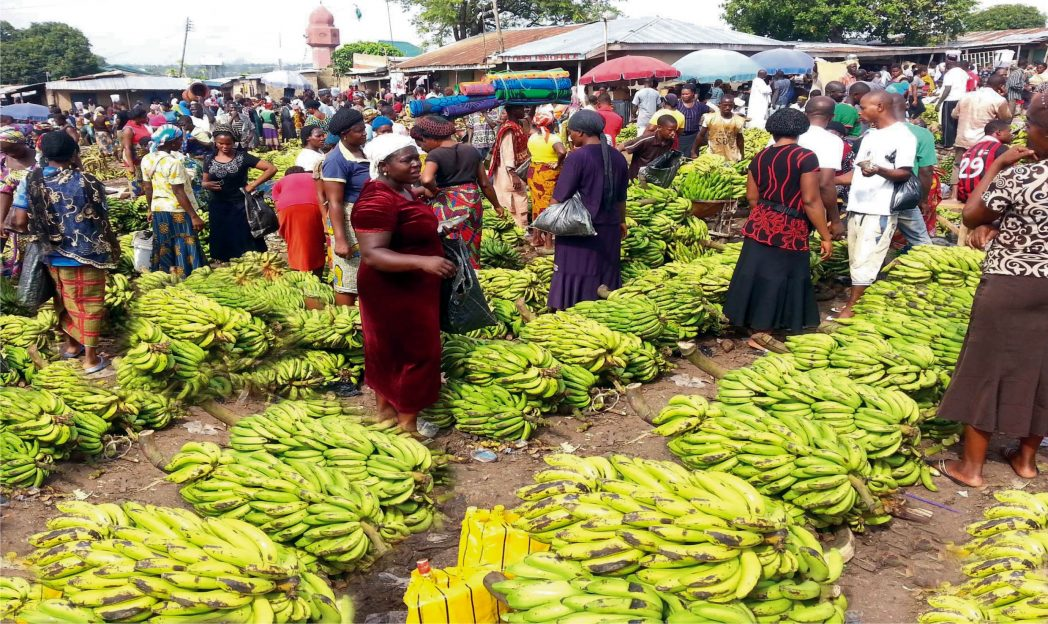 Customers buying banana bunches at Zuba Fruit Market in Abuja, recently.