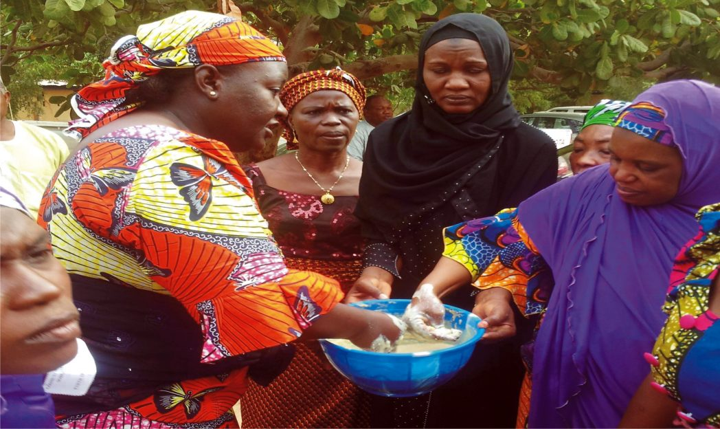 Women preparing food during a practical session on processing Food for School Feeding and Family Noruishment organised by the Federal Ministry of Agriculture in Gombe State recently.