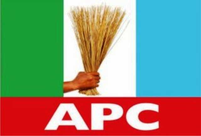 APC Chieftain Protests Male Dominance In Party's NEC