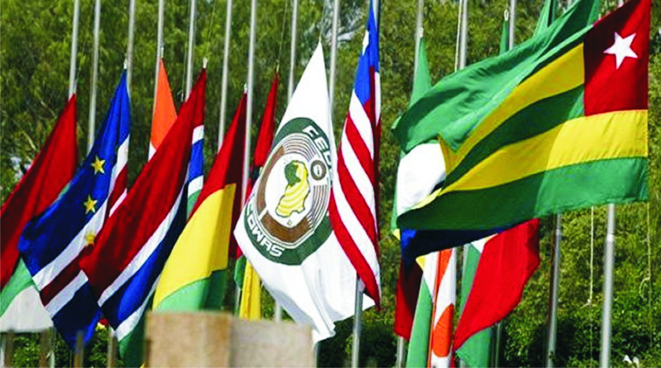 Image result for WAPP plans full interconnection for 14 ECOWAS countries